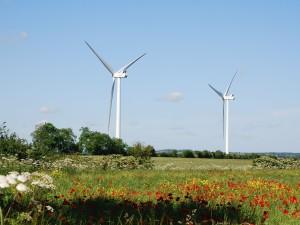 Pela transição ecológica e democrática