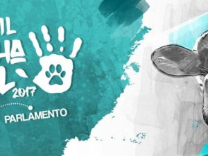 Marcha ANIMAL 2017 – Lisboa – 8 abril