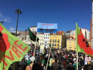 Um governo e uma maioria sem política ambiental