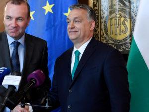 PSD e CDS apoiam candidato da Europa fortaleza e austeritária