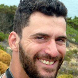 Sérgio Domingues
