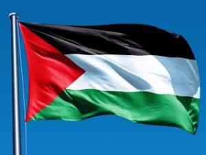 Sobre o voto de condenação à agressão israelita a Gaza