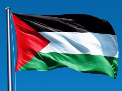 LIVRE condena violência em Jerusalém e apela ao reconhecimento da Palestina