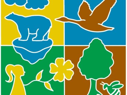 A diversidade faz a vida – Dia Internacional da Biodiversidade 2020