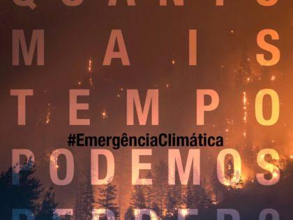 Emergência Climática: um ano depois, continua tudo por fazer