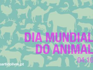 Dia do Animal: o tanto que há por fazer