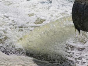 No Dia Mundial da Água, o LIVRE alerta para crise ambiental no Rio Nabão