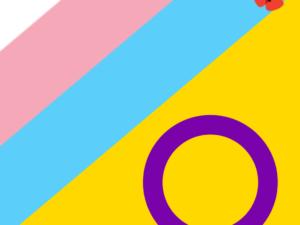 3 Anos Depois da AR aprovar Autodeterminação de Género aos 16 anos