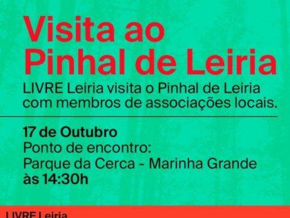 17 outubro – Visita ao Pinhal de Leiria